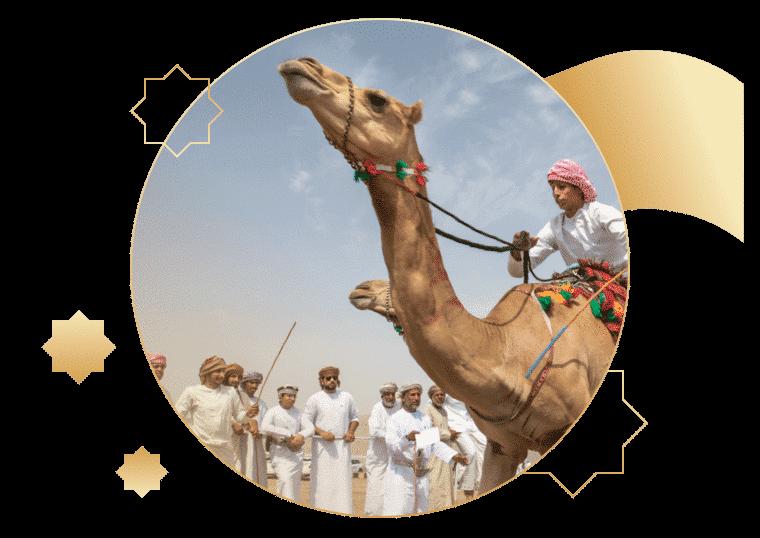 Camel racing dubai betting line celtic v st johnstone betting preview on betfair